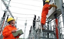 Quy định về tổ chức, hoạt động của Tập đoàn Điện lực Việt Nam