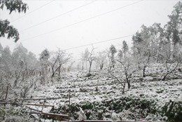 Lào Cai: Tắc Quốc lộ 4D vì băng tuyết dày đến 50cm