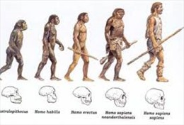 Phát hiện mới về nguồn gốc người hiện đại
