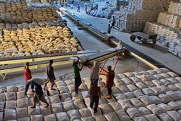 Gạo Việt Nam phải chấp nhận cạnh tranh quyết liệt trong năm 2014