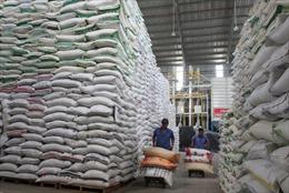 Gạo Việt phải chấp nhận cạnh tranh quyết liệt