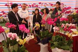 Hội chợ Xuân Giáp Ngọ - Nơi mua sắm tin cậy