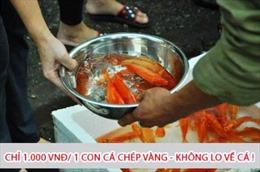3.000 đồng/3 cá chép vàng ủng hộ trẻ em vùng cao