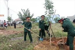 Tết trồng cây 'Đời đời nhớ ơn Bác Hồ'