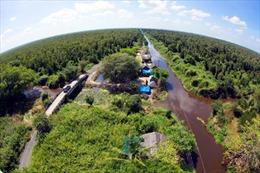 Nguy cơ cháy 1.000 ha rừng U Minh Hạ