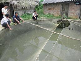 Tạo việc làm cho lao động sau học nghề tại Phú Thọ