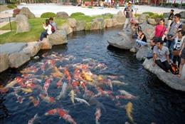 Vườn văn hóa Nhật Bản trong lòng TP. Hồ Chí Minh