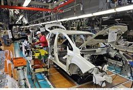 Nhật Bản, EU khởi động vòng đàm phán thứ 5 về FTA
