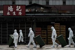 Điều chế vắcxin có thể chống cúm H7N9