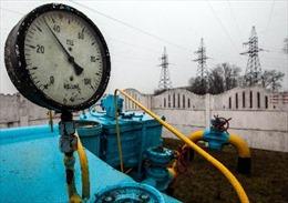 Ukraine ngừng nhập khí đốt Nga sau khi giá tăng