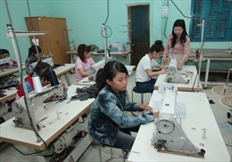 Chỉ đào tạo nghề nông thôn khi có việc làm cho người học