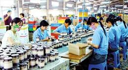 Sửa đổi Luật Doanh nghiệp, tạo điều kiện cho doanh nghiệp phát triển