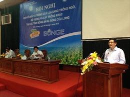 Liên kết bốn nhà giải quyết bài toán tăng thu nhập nông dân