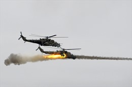 Máy bay quân sự Ukraine bị bắn rơi ở miền Đông