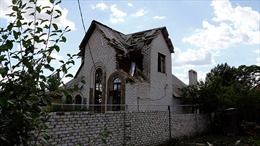 Ukraine đơn phương ngừng bắn ở miền Đông