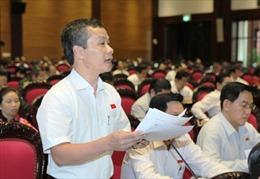 Quốc hội thông qua dự án Luật Hải quan (sửa đổi)