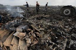 Ukraine không có thông tin về hộp đen của máy bay Malaysia