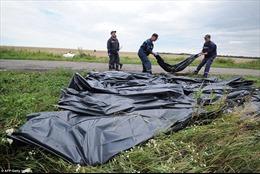 Thảm cảnh tại hiện trường MH17 hai ngày sau khi bị bắn rơi