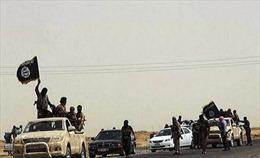 ISIL kêu gọi thanh niên Ai Cập gia nhập lực lượng