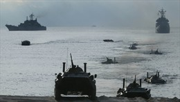 Hạm đội Baltic Nga tập trận đổ bộ hoành tráng