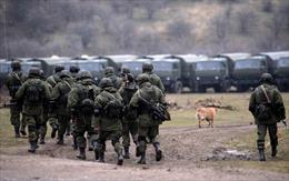 Nga điều 35 binh sĩ gìn giữ hòa bình đến Trung Phi và Cyprus