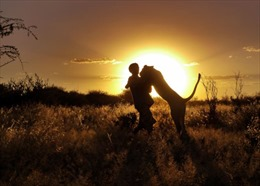 Nồng nàn... sư tử ôm