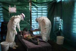 Quỹ Bill-Melinda Gates góp 50 triệu USD chống dịch Ebola