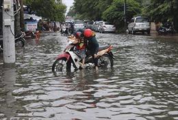 Thành phố Cà Mau ngập trong nước