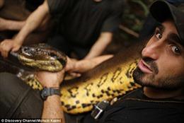 Nhà khoa học Mỹ tự cho trăn khổng lồ Amazon nuốt chửng