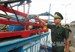 Tàu lạ dùng súng cướp tàu cá ngư dân Khánh Hòa ở Trường Sa