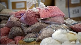 New Zealand tịch thu lượng ma túy lớn kỷ lục