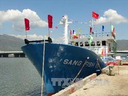 Ngư dân Quảng Nam băn khoăn khi chọn tàu vỏ thép