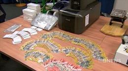 Australia triệt phá tổ chức làm giấy tờ giả quy mô lớn