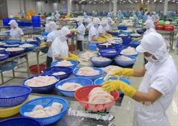 Italy coi Việt Nam là 'cửa ngõ' vào thị trường Đông Nam Á