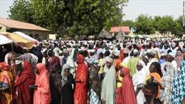 Nigeria điều tra cáo buộc gian lận trong bầu cử Quốc hội