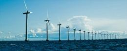 EU đánh giá cao tiềm năng năng lượng đại dương Việt Nam