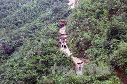 'Nóng' nạn khai thác lâm sản trái phép tại hồ Núi Cốc
