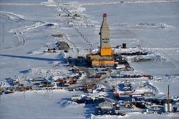 Nga khánh thành nhà máy khí tự nhiên hóa lỏng tại Bắc Cực