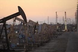 Mỹ trở thành nước sản xuất dầu khí lớn nhất thế giới