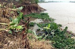 Cần sớm di dời người dân khu vực bị sạt lở ở Thái Nguyên