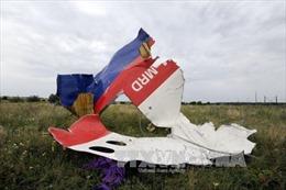 Hà Lan xem xét 2 kịch bản gây ra thảm kịch MH17