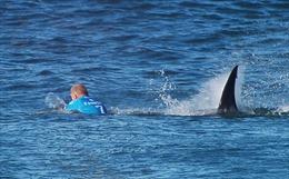 Cá mập tấn công vận động viên lướt ván