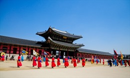 Transviet Travel xúc tiến tour Hàn Quốc sau dịch MERS- CoV