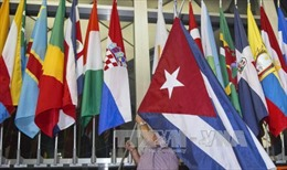 Ủy ban của Thượng viện Mỹ thông qua dỡ bỏ lệnh cấm du lịch tới Cuba