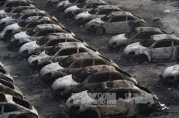Vụ nổ tại Thiên Tân: 44 người chết, 520 người bị thương