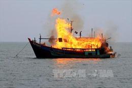 Phản ứng của Việt Nam trước việc Indonesia đánh chìm tàu cá nước ngoài
