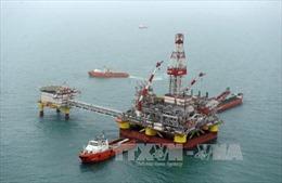 Giá vàng giảm, giá dầu phục hồi tại châu Á