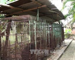 Dân vẫn trì hoãn giao nộp gấu nuôi nhốt
