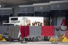 Các nghi can trong vụ 71 thi thể trong xe đông lạnh trình diện tòa