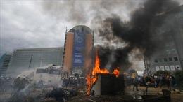 """Chính sách nông nghiệp của châu Âu đang """"gây bão"""" tại Brussels"""